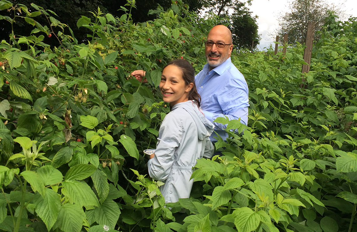 Harvest time at the Contini Kitchen Garden